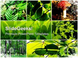 Green Summer Forest Collage Nature PowerPoint Templates And PowerPoint Backgrounds 0611