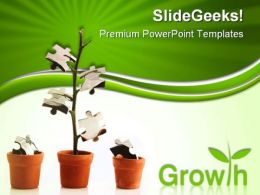 Growth Business PowerPoint Templates And PowerPoint Backgrounds 0511