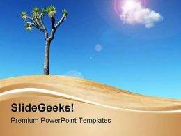 Joshua Tree Nature PowerPoint Templates And PowerPoint Backgrounds 0711