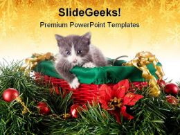 Kitty In Christmas Basket Animals PowerPoint Template 1010