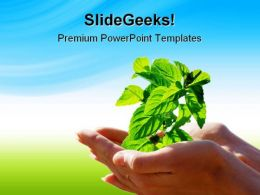 Leaf In Hands Environment PowerPoint Templates And PowerPoint Backgrounds 0711