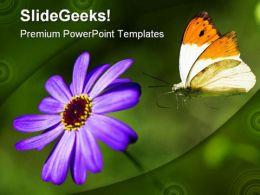 Lilac Flower Beauty PowerPoint Template 0810