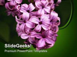 Lilacs Nature PowerPoint Templates And PowerPoint Backgrounds 0311