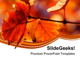 Orange Leaves Nature PowerPoint Templates And PowerPoint Backgrounds 0611