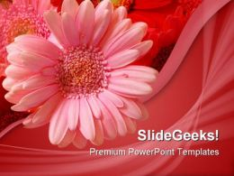 Pink Flower Beauty PowerPoint Template 1110
