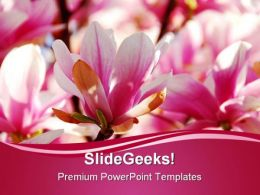 Pomegranate Flowers Nature PowerPoint Templates And PowerPoint Backgrounds 0211
