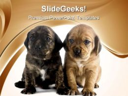 Puppy Brothers Animals PowerPoint Templates And PowerPoint Backgrounds 0711