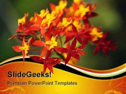 Red Orchid Nature PowerPoint Templates And PowerPoint Backgrounds 0611