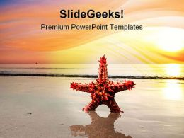 Red Starfish Beach PowerPoint Templates And PowerPoint Backgrounds 0811