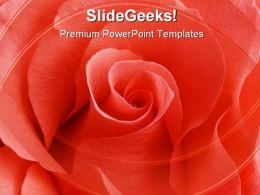 Rose01 Beauty PowerPoint Templates And PowerPoint Backgrounds 0711