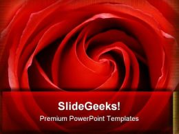 Rose Beauty PowerPoint Templates And PowerPoint Backgrounds 0711