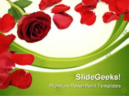 Rose Border Beauty PowerPoint Templates And PowerPoint Backgrounds 0711