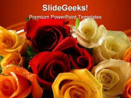 Roses Nature PowerPoint Templates And PowerPoint Backgrounds 0511