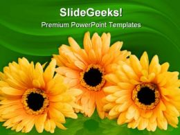 Silk Flowers Beauty PowerPoint Templates And PowerPoint Backgrounds 0211