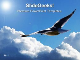 Soaring Through The Clouds Animals PowerPoint Templates And PowerPoint Backgrounds 0811