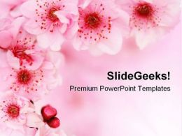 Spring Cherry Flowers Background Beauty PowerPoint Templates And PowerPoint Backgrounds 0611