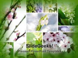 Spring Flowers Beauty PowerPoint Template 0810