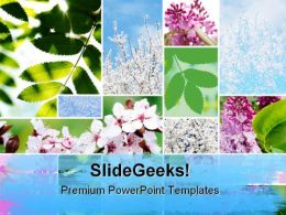 Springtime Flowers Nature PowerPoint Templates And PowerPoint Backgrounds 0811
