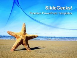 Starfish On The Beach Nature PowerPoint Templates And PowerPoint Backgrounds 0811