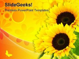 Sunflower Abstract Beauty PowerPoint Template 0810