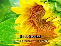 Sunflower Beauty PowerPoint Template 1110