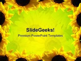 Sunflowers Beauty Abstract PowerPoint Template 1110
