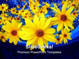 Sunflowers Beauty Background PowerPoint Template 1110