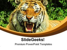 Tiger Snarl Animals PowerPoint Templates And PowerPoint Backgrounds 0211