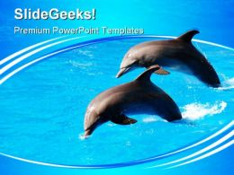 Two Dolphin Jumping Animals PowerPoint Templates And PowerPoint Backgrounds 0411