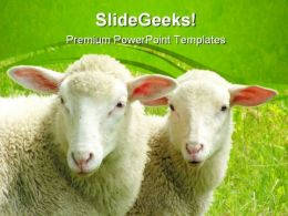 Two Sheep Nature PowerPoint Templates And PowerPoint Backgrounds 0411