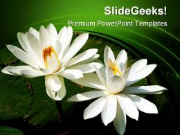 Water Lilies Nature PowerPoint Templates And PowerPoint Backgrounds 0311