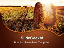 Wheat Field Agriculture PowerPoint Templates And PowerPoint Backgrounds 0511