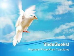 White Dove Nature PowerPoint Templates And PowerPoint Backgrounds 0411