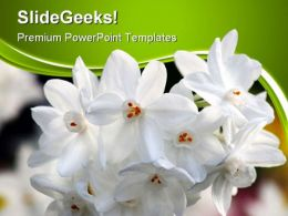 White Flowers Nature PowerPoint Templates And PowerPoint Backgrounds 0411