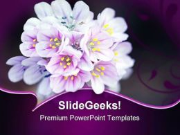 Wild Flower Beauty PowerPoint Templates And PowerPoint Backgrounds 0211