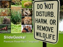 Wild Life Sign Animals PowerPoint Templates And PowerPoint Backgrounds 0611