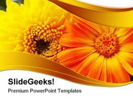 Yellow Flower Beauty PowerPoint Templates And PowerPoint Backgrounds 0311