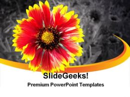 Yellow Flower On Background Beauty PowerPoint Templates And PowerPoint Backgrounds 0311