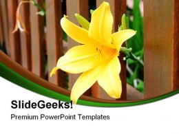 Yellow Freedom Flower Nature PowerPoint Templates And PowerPoint Backgrounds 0211