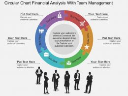 Qe Circular Chart Financial Analysis With Team Management Flat Powerpoint Design