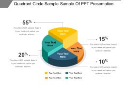 Quadrant Circle Sample Sample Of Ppt Presentation
