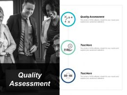Quality Assessment Ppt Powerpoint Presentation Layouts Outfit Cpb