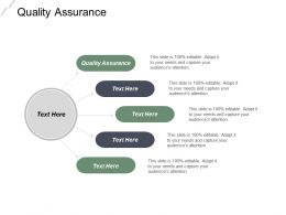 Quality Assurance Ppt Powerpoint Presentation File Example Introduction Cpb