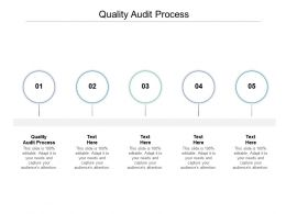 Quality Audit Process Ppt Powerpoint Presentation Layouts Visual Aids Cpb