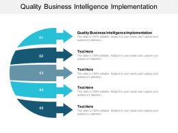 Quality Business Intelligence Implementation Ppt Powerpoint Presentation Inspiration Cpb