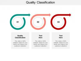 Quality Classification Ppt Powerpoint Presentation Icon Themes Cpb