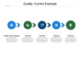 Quality Control Example Ppt Powerpoint Presentation Inspiration Influencers Cpb