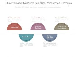 Quality Control Measures Template Presentation Examples