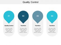 Quality Control Ppt Powerpoint Presentation Layouts Backgrounds Cpb