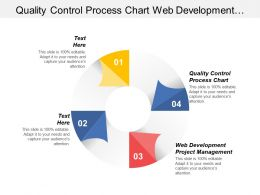 Quality Control Process Chart Web Development Project Management Cpb